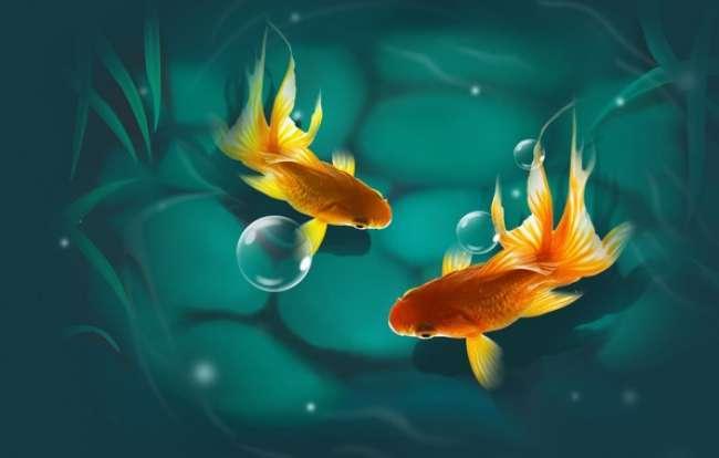 Muškarac riba izlazi s ženskom vodenjakom